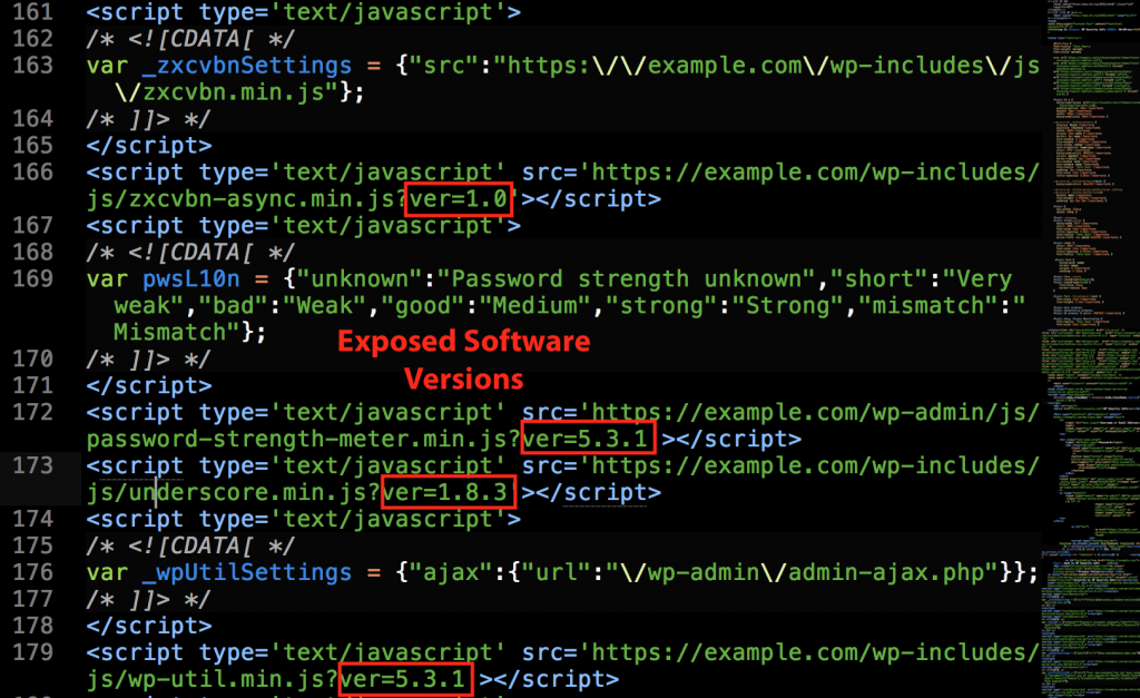 Examples of Exposed Software Versions in WordPress